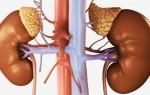 Как выявить и вылечить состояние гиперплазии надпочечников?