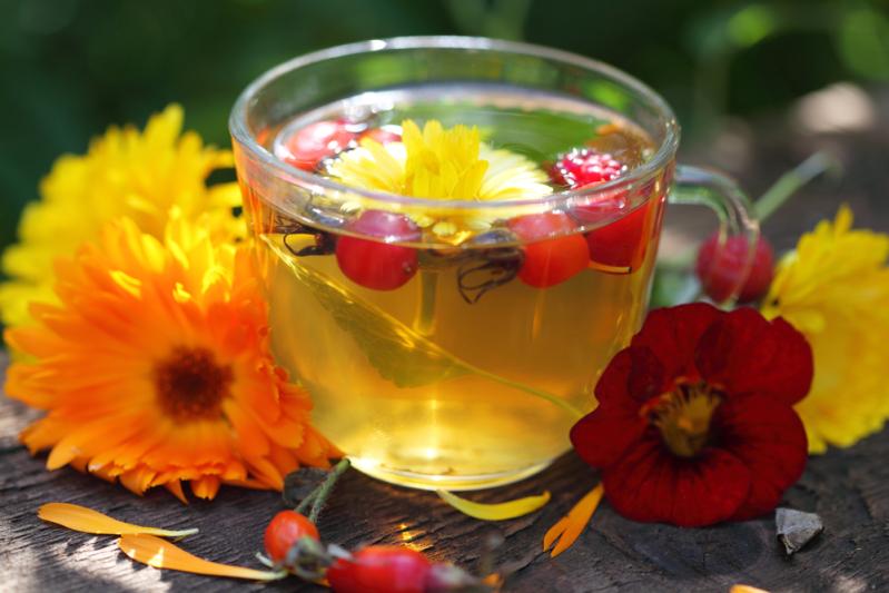 травяной чай от болезней почек