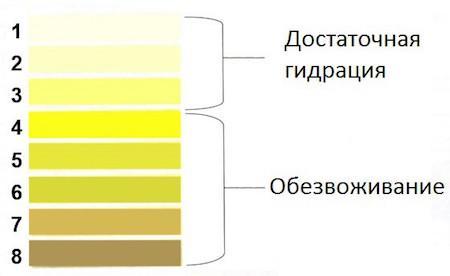 степени прозрачности мочи
