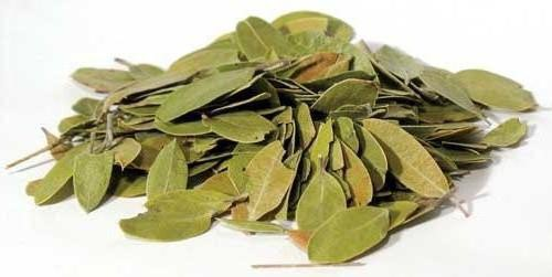 Брусничный лист