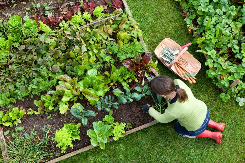 девушка работает в саду