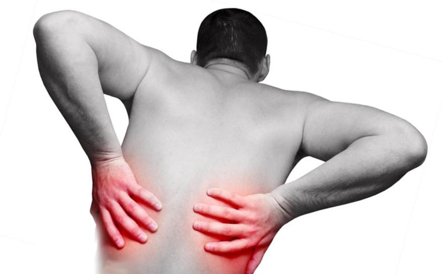 Что болит почки или поясница: характер болей и диагностика