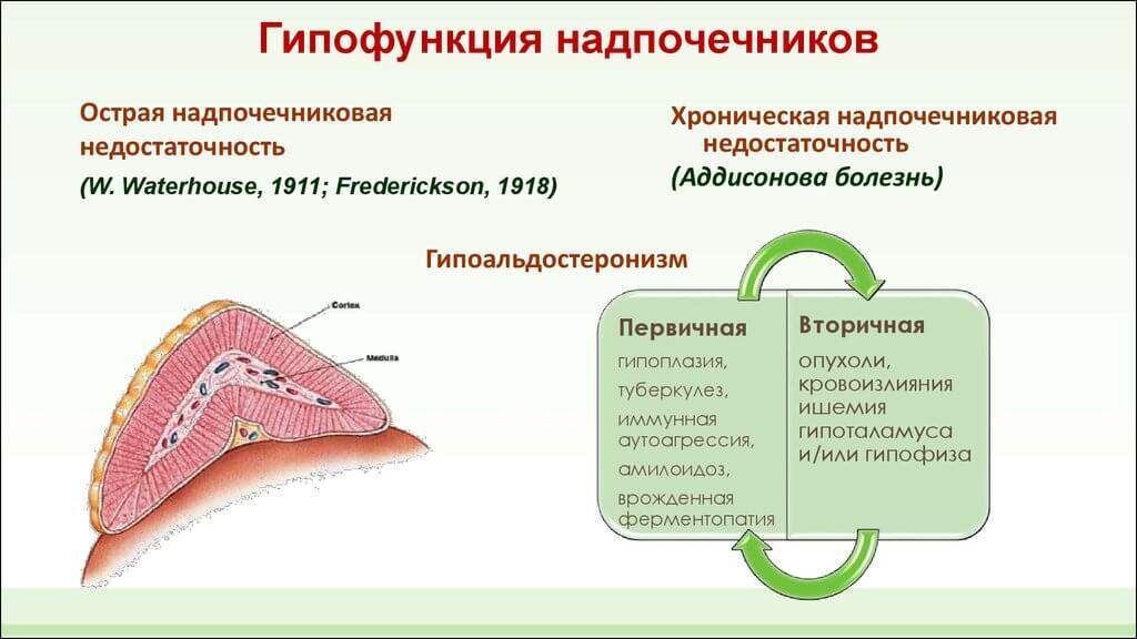 гипофункция надпочечников