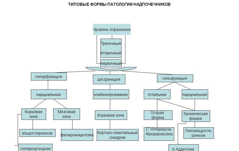 гиперфункция и гипофункция надпочечников, формы паталогии