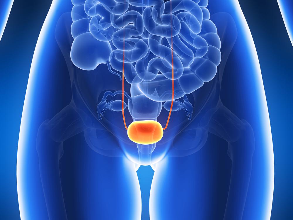 Как укрепить мочевой пузырь женщине таблетками — Почки