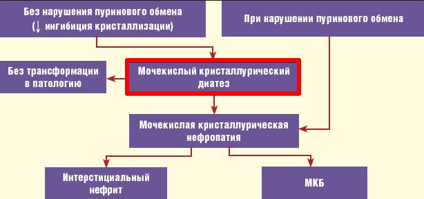 мочекислый диатез - схема