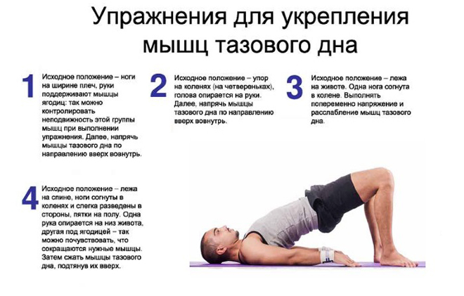 упражнения для укрепления тазового дна