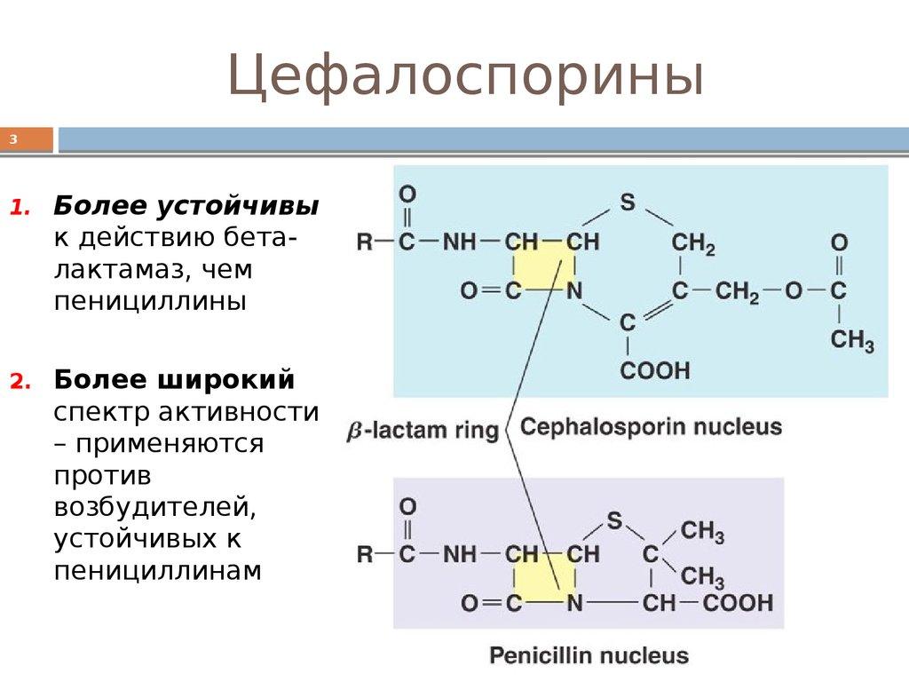 цефалоспорины